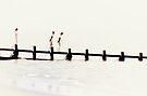 On the Breakwater by Kasia-D