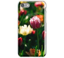 Sunlit Pink Tulip iPhone Case/Skin