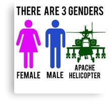 Genders Canvas Print