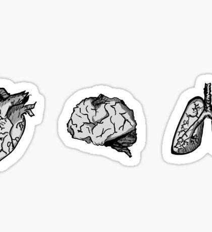 essential organs Sticker