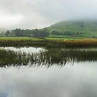 Lakeland Moods by Jamie  Green
