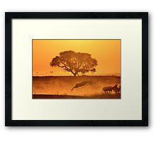 Nature Sunset of Gold - African Wildlife Background  Framed Print