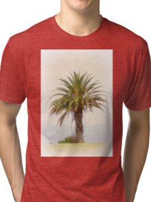 Single Palm Tree California Retro Tri-blend T-Shirt