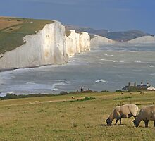 The Seven Sisters- HDR by Colin  Williams Photography