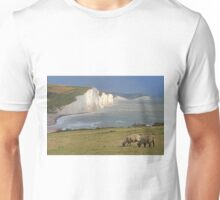 The Seven Sisters- HDR Unisex T-Shirt