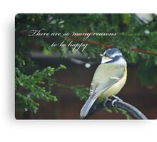 Reasons To Be Happy (Blue Tit)  Canvas Print