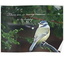 Reasons To Be Happy (Blue Tit)  Poster