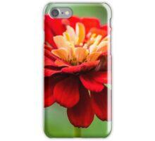 Bursts of Color iPhone Case/Skin