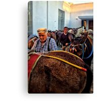 Men with Mules Canvas Print