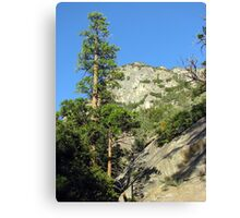 King's Canyon Canvas Print