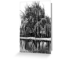 Black and White Weeping Willow Greeting Card