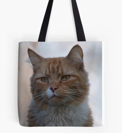 Not Happy about Posing Tote Bag
