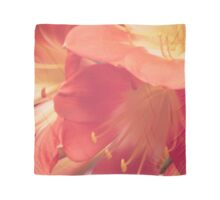 Delicate Flower   Photography #redbubble #women #home #decor Scarf