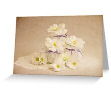 Little Pots Of Purity  Greeting Card
