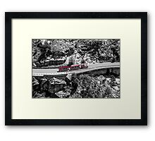 Train of Fun Framed Print