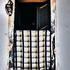 window - ventana by Bernhard Matejka