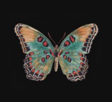 Limenitis Astyanax-The Red-Spotted Purple Kids Tee