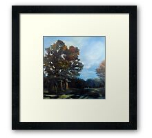 Kennesaw Mountain Battlefield Park Framed Print
