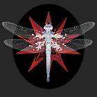 Dragonfly by Kajoi