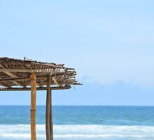 Beach Side in Africa  by Dave Cole