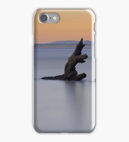 Dragon reflection iPhone Case/Skin