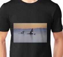 Dragon reflection Unisex T-Shirt