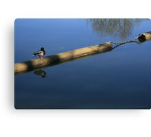 Duck Patrol Canvas Print