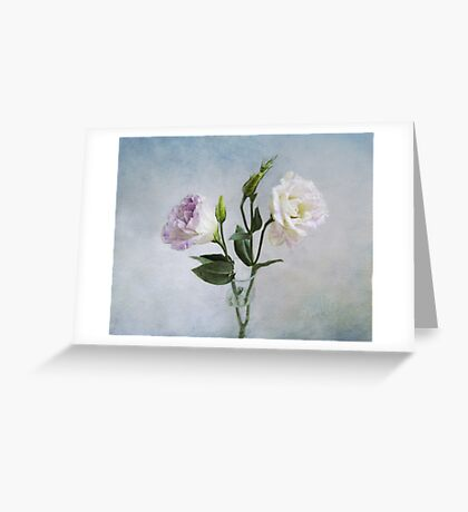Lavender and White Anemones Still Life Greeting Card