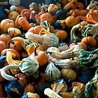 Wall to wall gourds. by Billlee