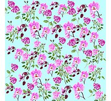 pink rose orchid and hydrangea in blue background Photographic Print