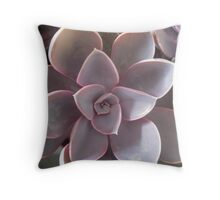 Succulent lovers gifts purple Throw Pillow