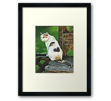 Regal White Calico Cat, painting Framed Print