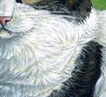 Oreo the Maine Coon, painting Sticker