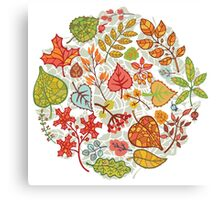 Circle composition with Autumn leaves,branches,berries Canvas Print