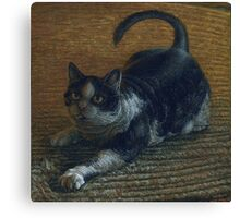 Fat Tuxedo Cat playing, acrylic painting Canvas Print