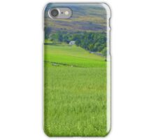 Donegal In The Summertime iPhone Case/Skin