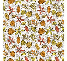 Decorative Autumn leaves seamless pattern  Photographic Print