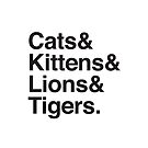 cats & kittens & lions & Tigers by jazzydevil