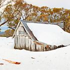 Snowed In, Wallace Hut, Falls Creek, Victoria, Australia by Michael Boniwell