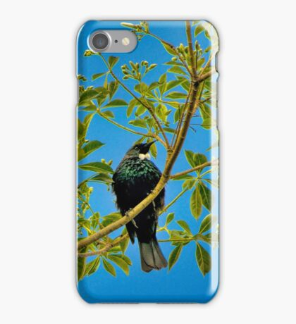 NZ Native Tui iPhone Case/Skin