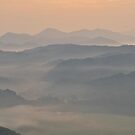 color of the smokies by dc witmer