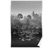 Everglades canal Poster