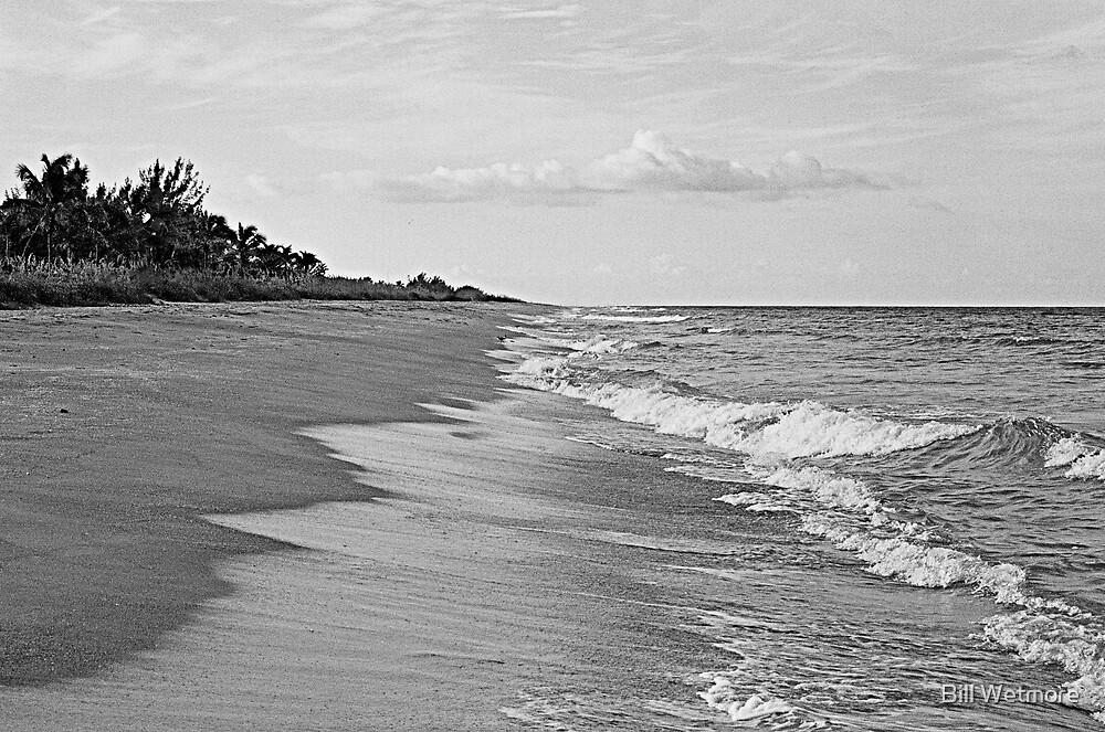 Island Beach by Bill Wetmore
