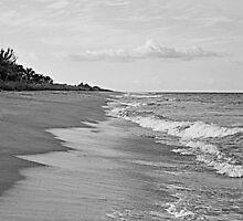 Island Beach by njordphoto
