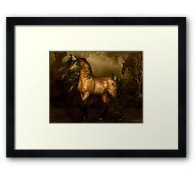 Shikoba - Choctaw Native American Horse Framed Print