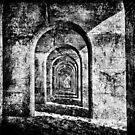 Monochrome Arches by Dave Hare