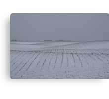 Winter Farm Fields - Rolling Hills on a Bleak Snowy Day Canvas Print