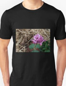 The First Rose of the season Unisex T-Shirt