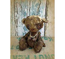 Handmade bears from Teddy Bear Orphans - Master Cecil, a vintage bear Photographic Print