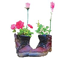 Old shoes with flowers Photographic Print